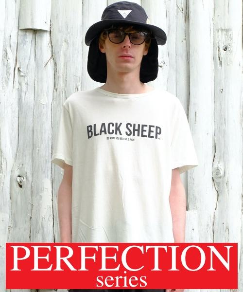 画像1: 【VIRGO】PERFECTION 21 (STD) 「B.S」 (1)